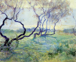 Guy Rose (US 1867-1925), Tamarisk Trees in Early Sunlight